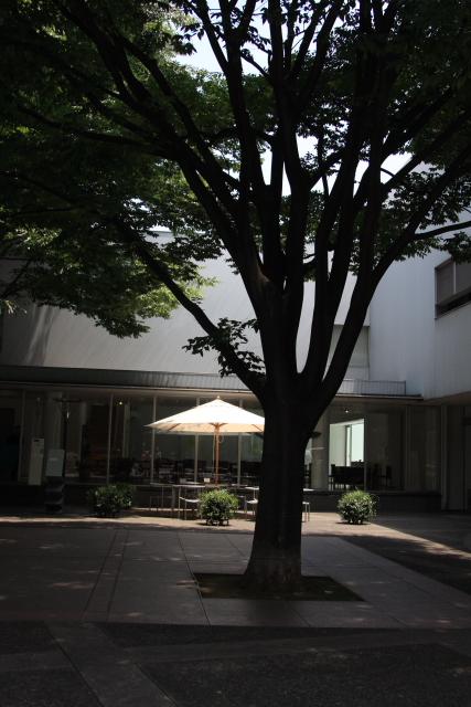 IMG_2936-a.JPG